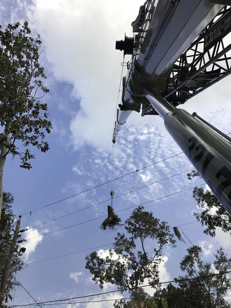 Spinning Crane Works Central Florida Crane and Rigging Service on the job